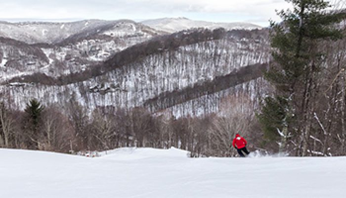 Plan your Wolf Ridge Resort trip!
